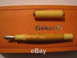 Pelikan Sahara Special Edition Sahara Fountain Pen Medium Pt New In Box