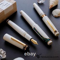 SAILOR Pro Gear Classic Ko Makie Fountain Pen Lotus line RADEN