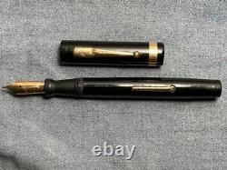 Swan 46 Eternal Fountain Pen Flexible Nib