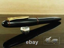Platine Izumo Tamenuri Grande Plume Pen Piz-55000 Akatame Medium 1618283